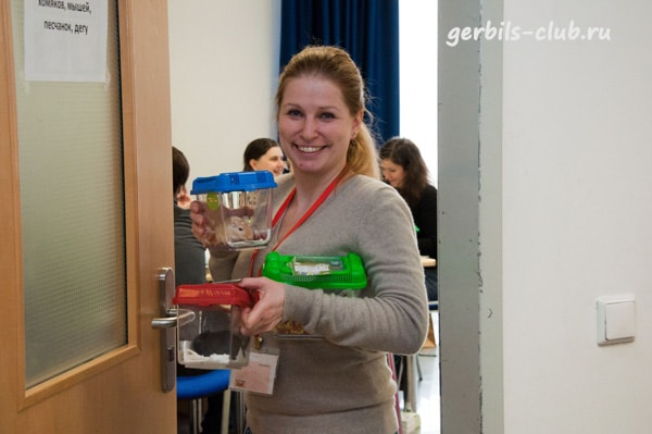 Отчет Gerbils-Club о весенней выставке ЗооПалитра