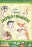 III Выставка маленьких грызунов «ЗВЕРЁК НА ЛАДОШКЕ», 1-2 апреля 2006