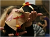 20.03.2010 г. Конкурс костюмов для морских свинок. Фото: Инга Сборщикова