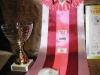 Лаки Хамстер Лилия, джунгарский хомяк, окрас: голубой жемчуг, вл. Карлина Н.В. Best  Dwarf  Hamster
