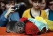 """Журнал \""""Свободный доступ\"""": Новые наряды на подиуме выставки \""""Зоопалитра\"""". Фото: Евгений Чесноков"""