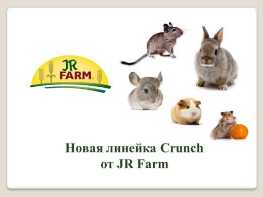 Crunch - новая линейка кормов JR FARM для грызунов, кроликов и птиц