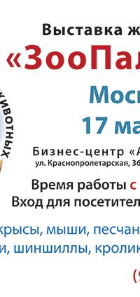 Рекламные листовки выставки: март 2018