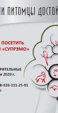 Заказ продукции у компании Супрэмо - февраль 2020