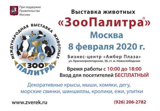 8 февраля 2020 г. в Москве в Бизнес-центр «Амбер Плаза», по адресу:ул. Краснопролетарская, 36 состоится выставка ЗооПалитра. Вход для посетителей бесплатный.