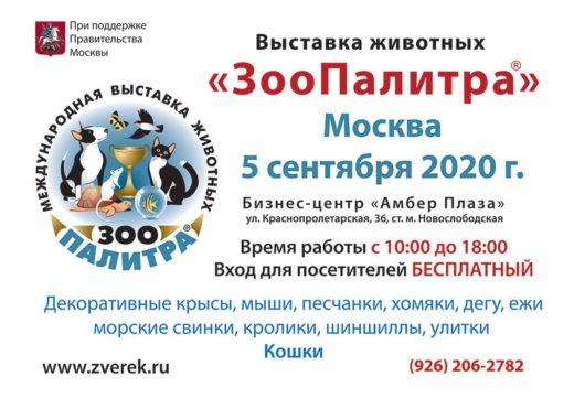 5 сентября 2020 года в Москве в Бизнес-центре «Амбер Плаза», ул. Краснопролетарская, 36 состоится выставка «ЗооПалитра». Вход на выставку БЕСПЛАТНЫЙ.