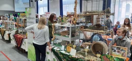 5 сентября 2020 года в Москве в Амбер Плазе прошла выставка домашних животных ЗооПалитра, завершившая шестнадцатый выставочный сезон.