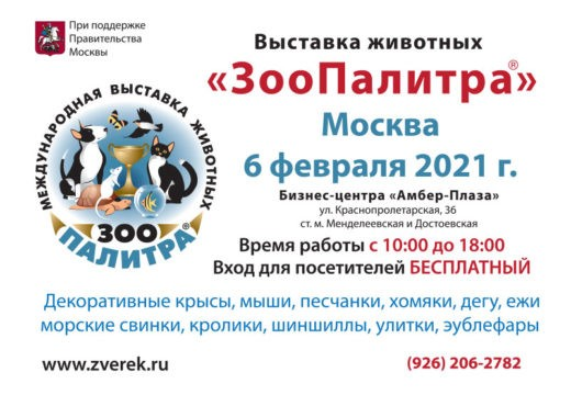 6 февраля 2021 года в Москве по адресу Бизнес-центр «Амбер Плаза», ул. Краснопролетарская, 36 состоится выставка мелких домашних животных «ЗооПалитра»