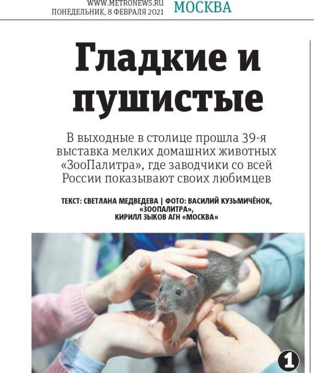 Гладкие и Пушистые, газета Метро, 8 февраля 2021